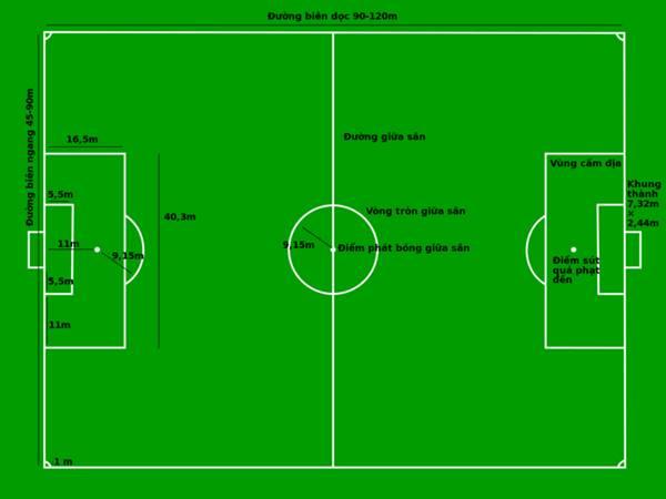 Kích thước sân bóng đá 11 người theo tiêu chuẩn của FIFA