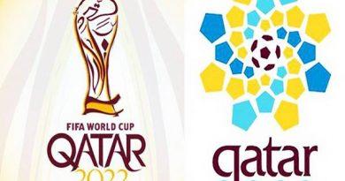 Có bao nhiêu vòng loại World Cup tại các khu vực?