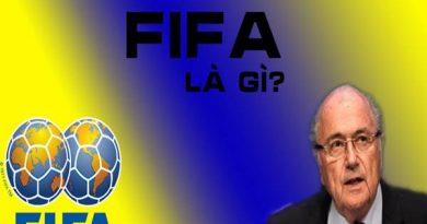 FIFA là gì? Nó giữ nhiệm vụ và vai trò như thế nào